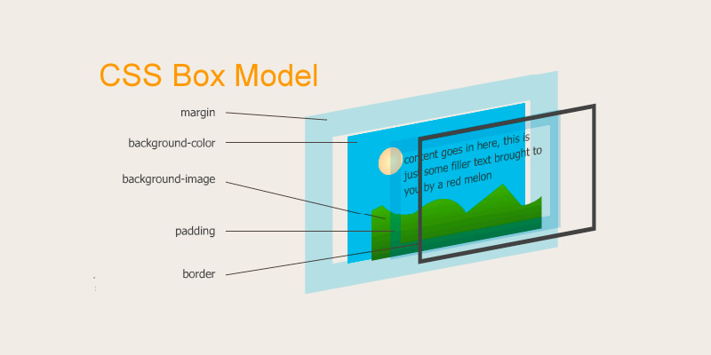 Css Box Model Padding Margin Border Kamlesh Shrestha